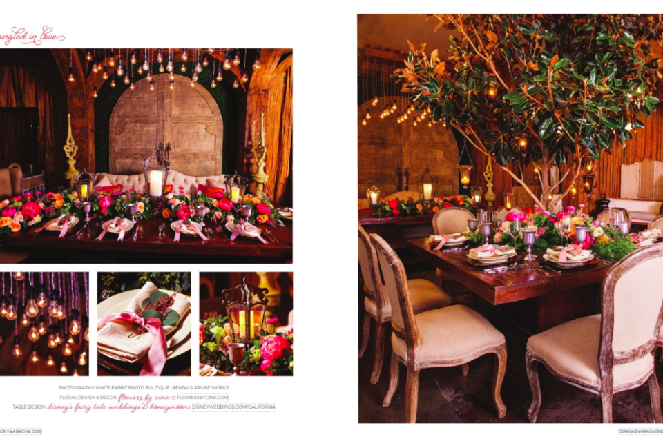 Disney's Tangled in Love Tabletop Design Featured in Ceremony Magazine